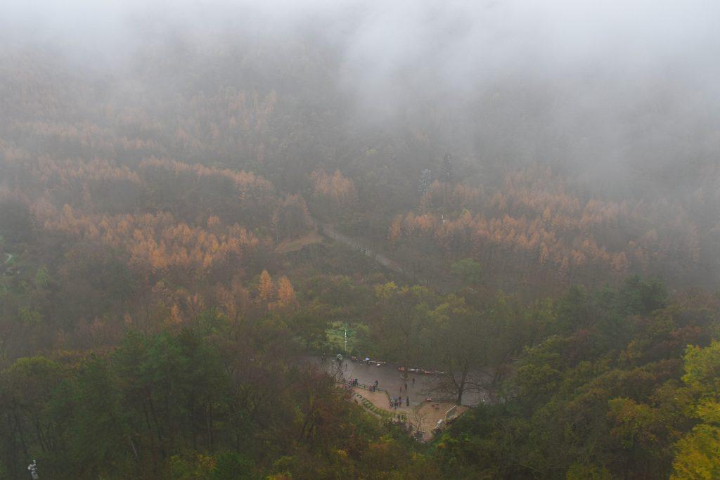 麦积山 大雾 1 1024x683 - 我在麦积山拍雾