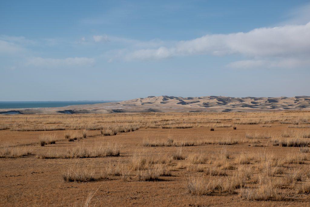 青海湖 沙漠 1024x683 - 青海湖一日游
